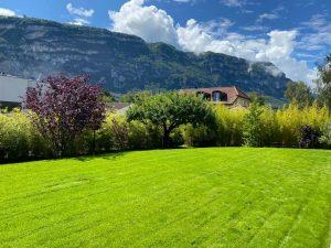 gazon-vert-xavier-paysagiste-suisse